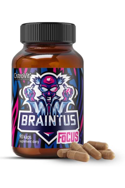 OstroVit Braintus Focus 90 caps - для мозга