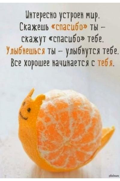 inv-0927-06 Карисова Олеся